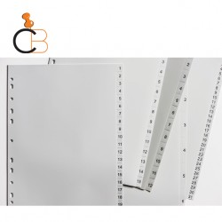 PP GREY DIVIDERS NUMERICAL or ALPHABETICAL