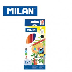 Milan Colour Pencils - Box of 12 hexagonal colour pencils